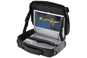 Portable DVD Player Mounts and Bags