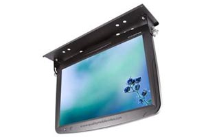 Specialty LCD Monitors